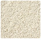 Stainmaster Shag / Frieze Carpet