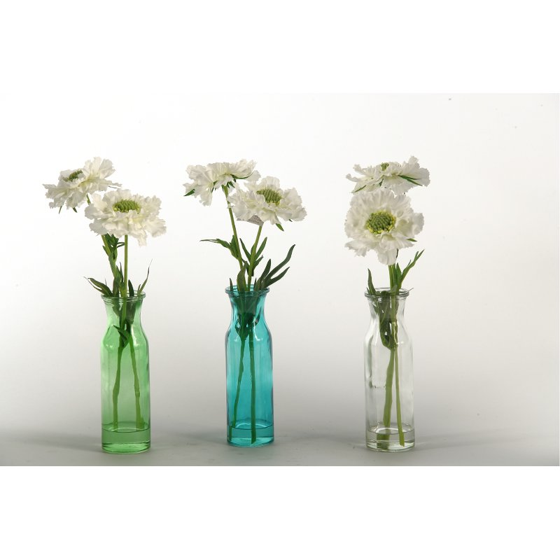 Assorted White Scabiosa Arrangement In Colored Glass Vases Rc
