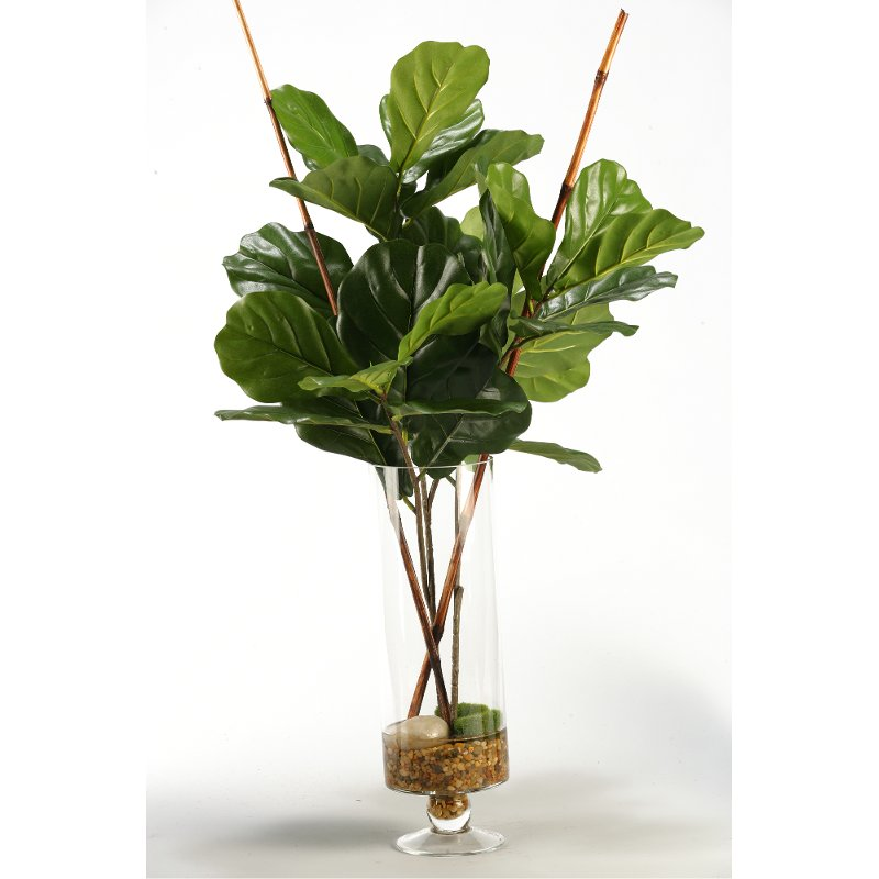 Fiddle Leaf Fig Branches Arrangement In Glass Vase Rc Willey