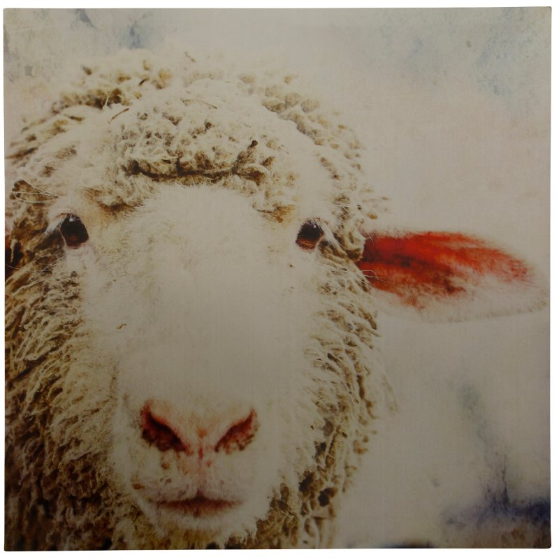 Patsy Sheep Print on Metal Panel Wall Art   RC Willey Furniture Store