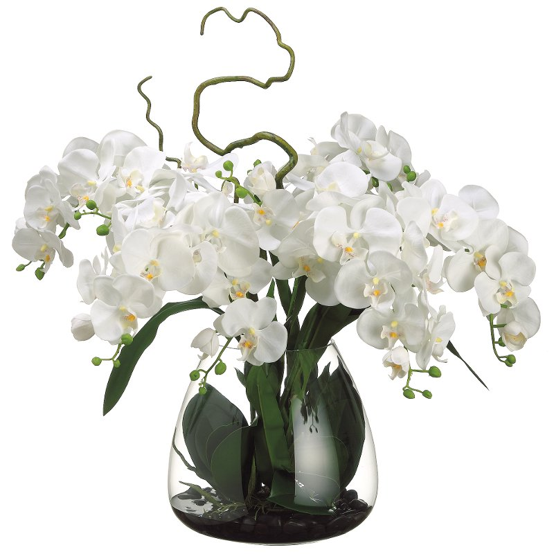 Faux Cream Phalaenopsis Orchid Arrangement In Glass Vase Rc Willey Furniture Store