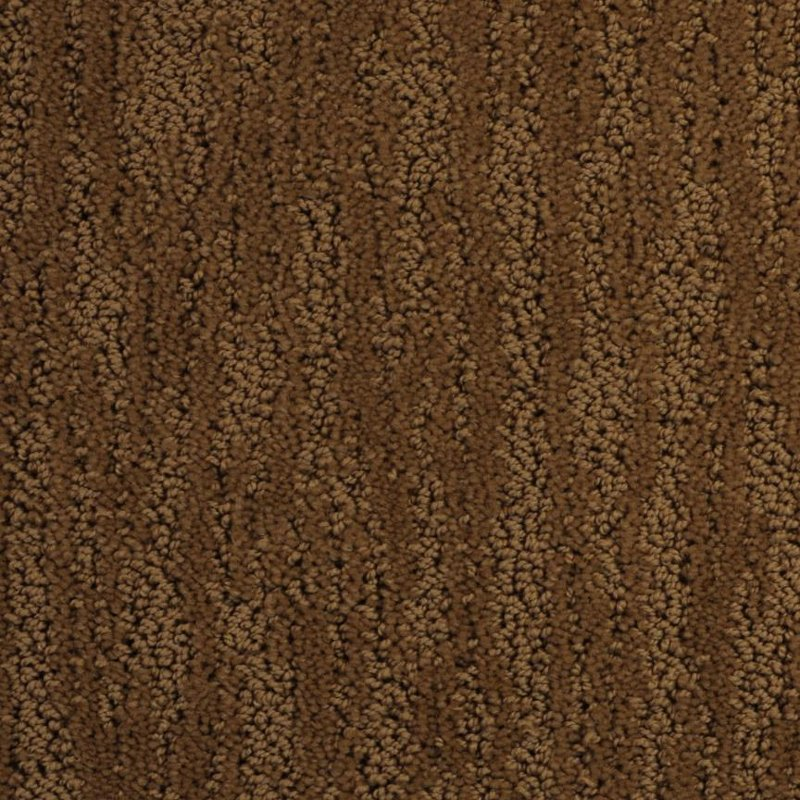 Rc Willey Carpet: Dixie Stainmaster Deloach Carpet