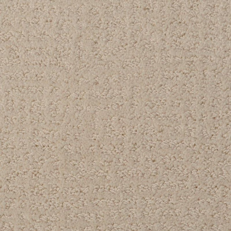 Rc Willey Carpet: Dixie Stainmaster Maceo Carpet
