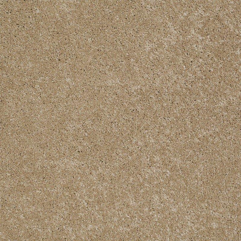 Rc Willey Carpet: Tuftex Stainmaster Rex Carpet