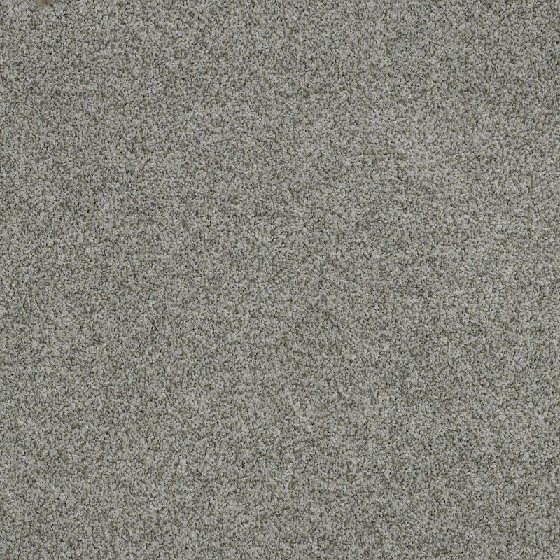 Tuftex Stainmaster Oliver Carpet Rc Willey Furniture Store