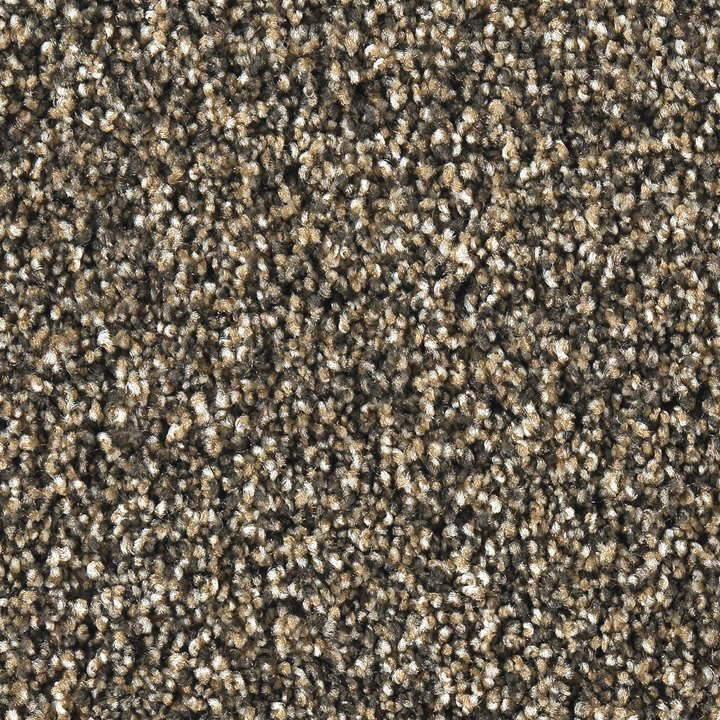 Rc Willey Carpet: Best Buy Smooth Operator Carpet