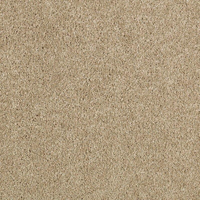 Rc Willey Carpet: Karastan Dovercourt Park Carpet