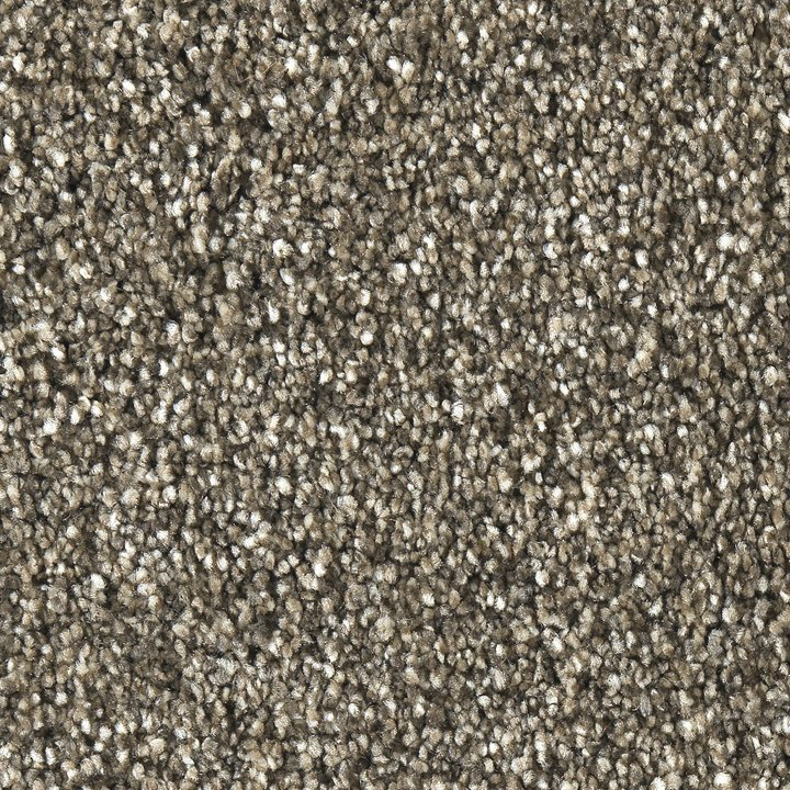 Best Buy Solo Carpet Rc Willey Furniture Store