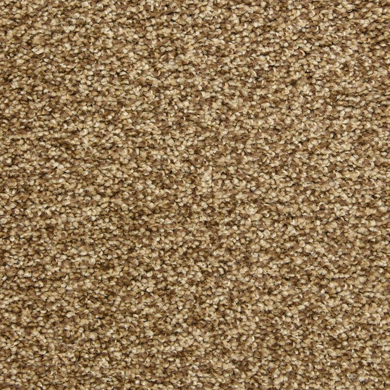 Rc Willey Carpet: Dixie Stainmaster Carefree Carpet