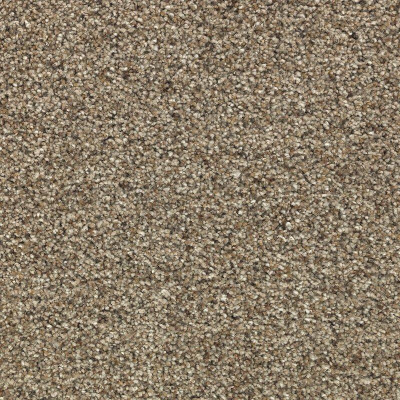 Rc Willey Carpet: Karastan Rustic Appeal Carpet