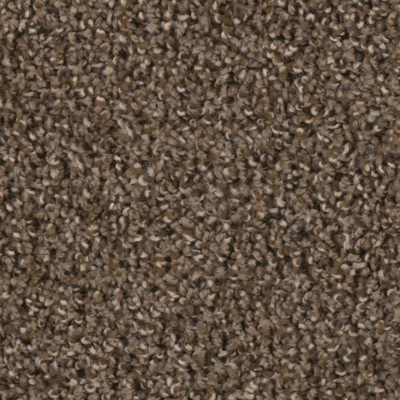 ... dream weaver step up carpet ...
