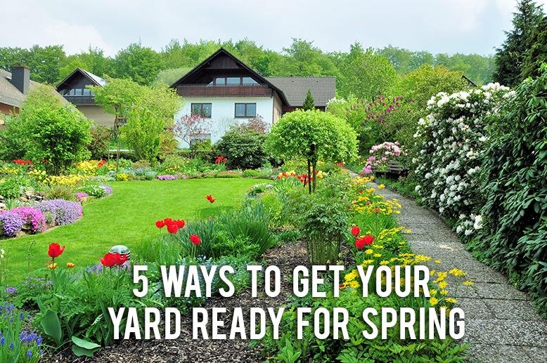 Yard Ready for spring