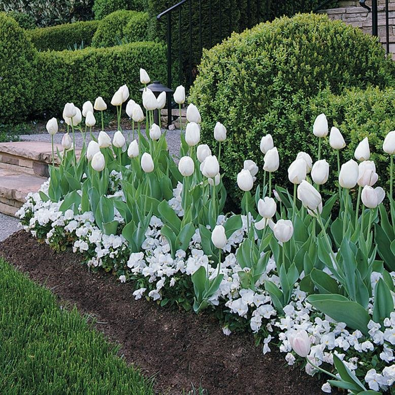 Easy Landscaping Ideas | RC Willey Blog on good landscape ideas, easy landscape, easy tile ideas, easy travel ideas, landscape design ideas, easy rock landscaping, easy landscaping timbers, easy walkways ideas, easy landscaping blueprints, easy fairy garden ideas, easy landscaping bushes, easy landscaping drawings, easy camping ideas, easy marketing ideas, easy planting ideas, easy staircase ideas, easy insulation ideas, easy science ideas, easy above ground pool ideas, front driveway ideas,