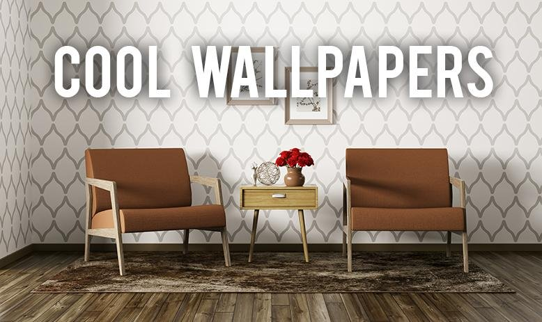 If You Can Find Cool Wallpapers Have The Most Amazing Accent Walls In Your Home Or Go Bold And Fill An Entire Room With A Print That Will