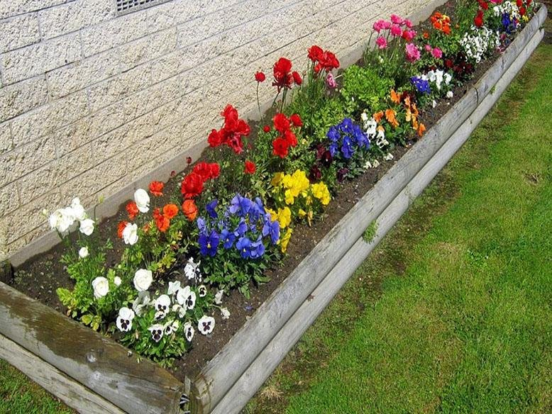 Flower Bed Ideas Rc Willey Blog