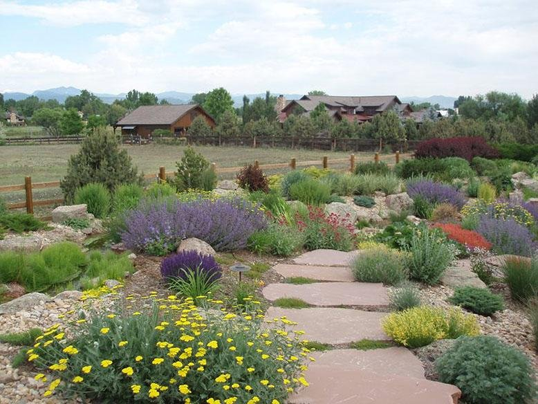 Xeriscaping Definition And Ideas Rc Willey Blog