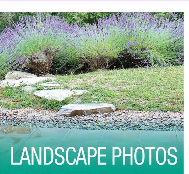 Landscape-Photos-Blog