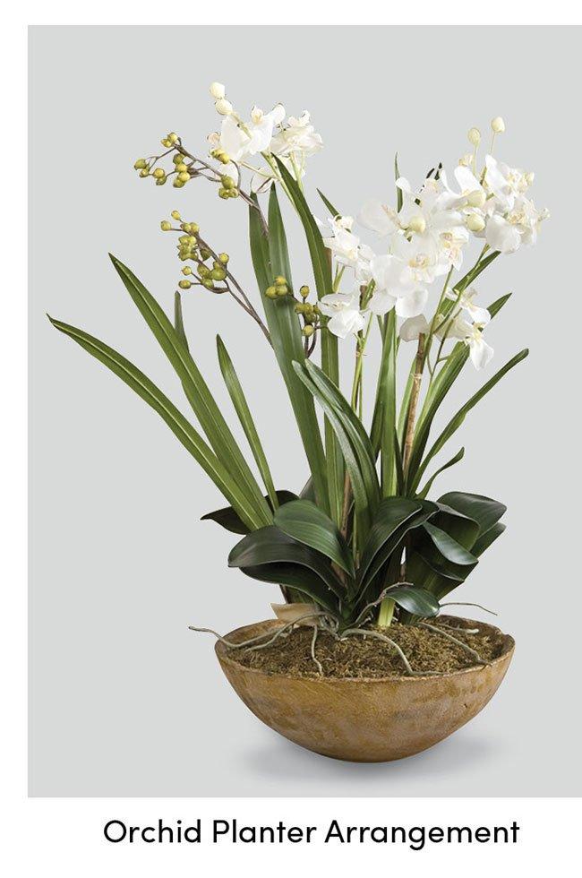 Orchid-planter-arragnement