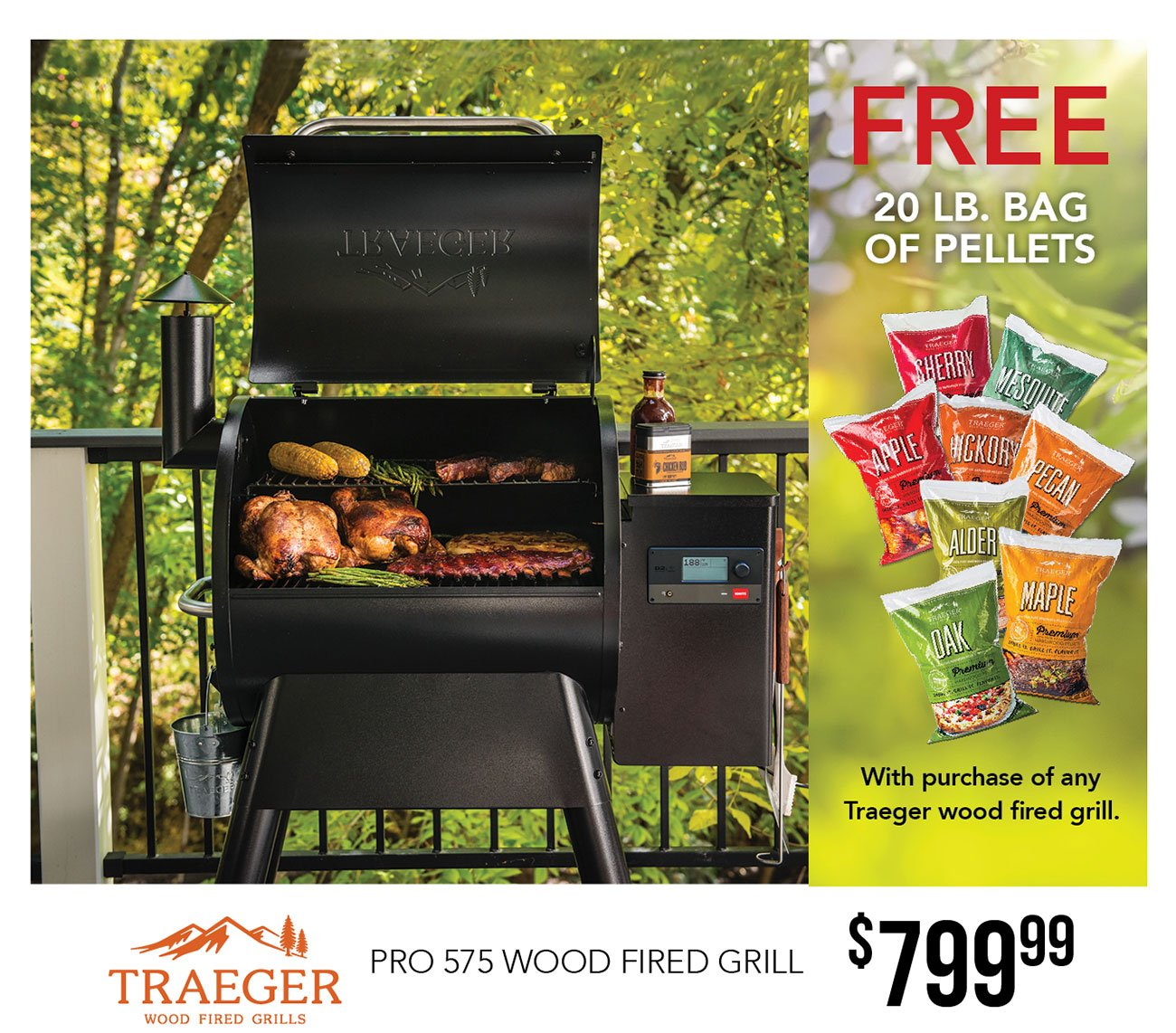 Traeger-wood-fired-grill