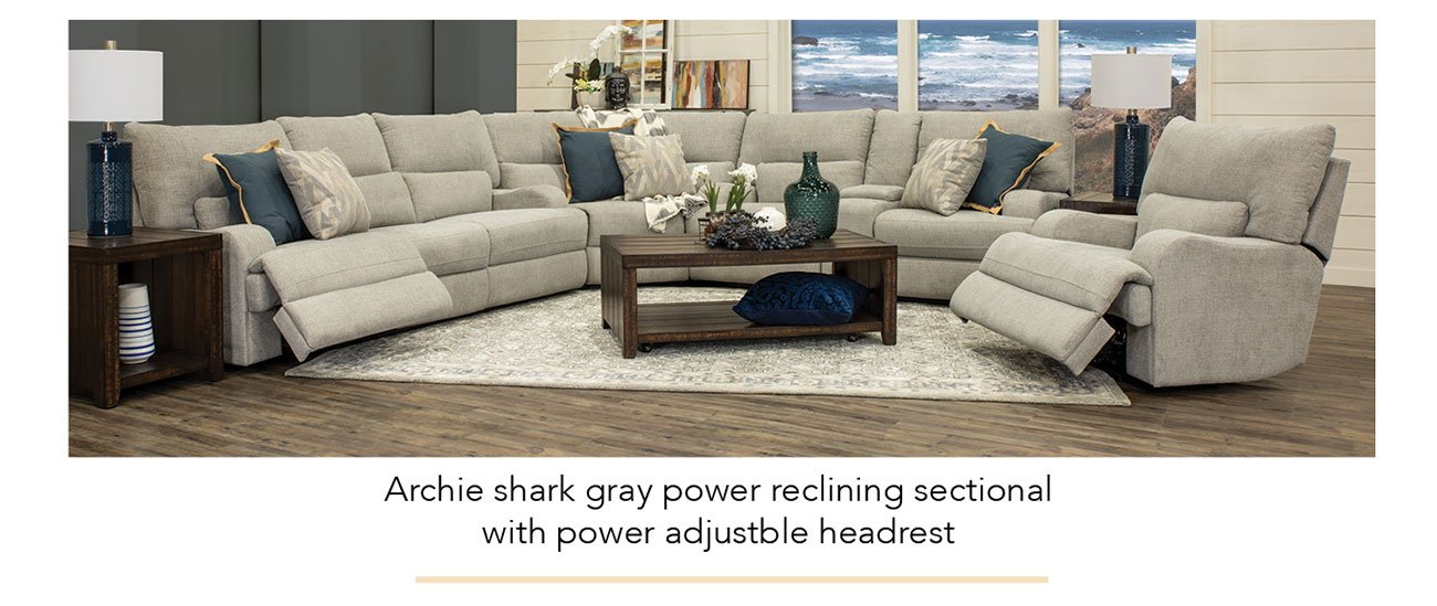 Archie-shark-power-sectional