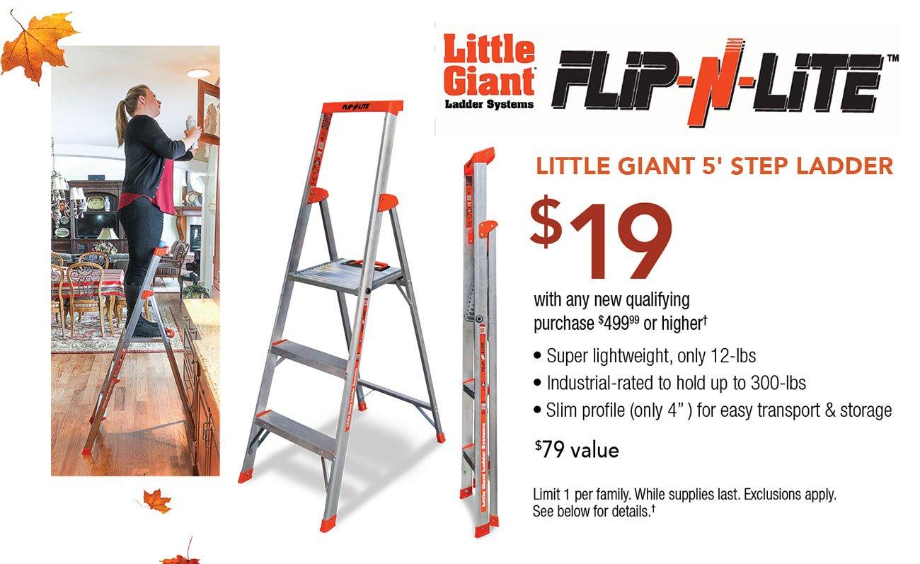Little-giant-5-foot-step-ladder