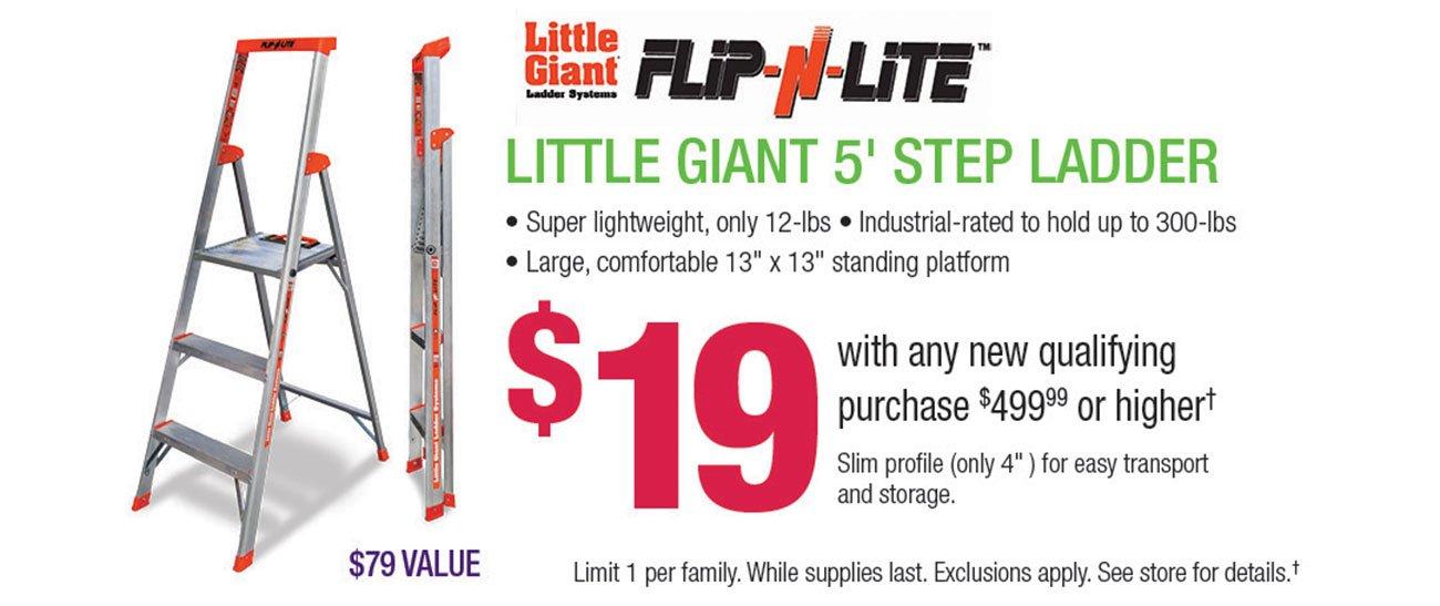 Little-Giant-Ladder