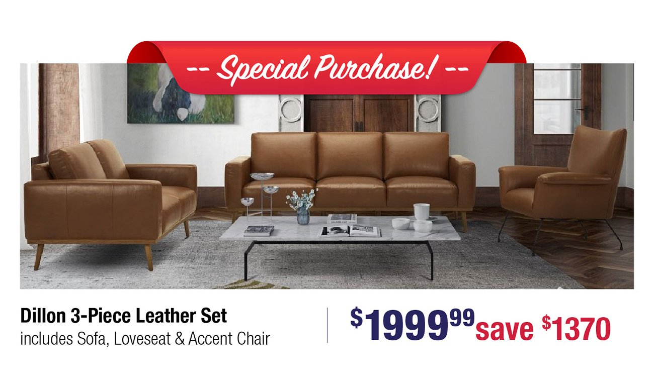 Dillon-leather-set