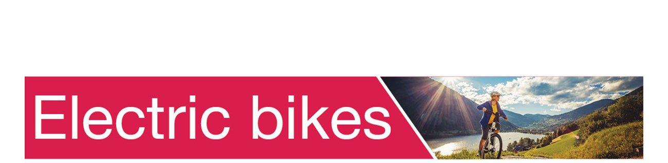 Shop-Electric-bikes