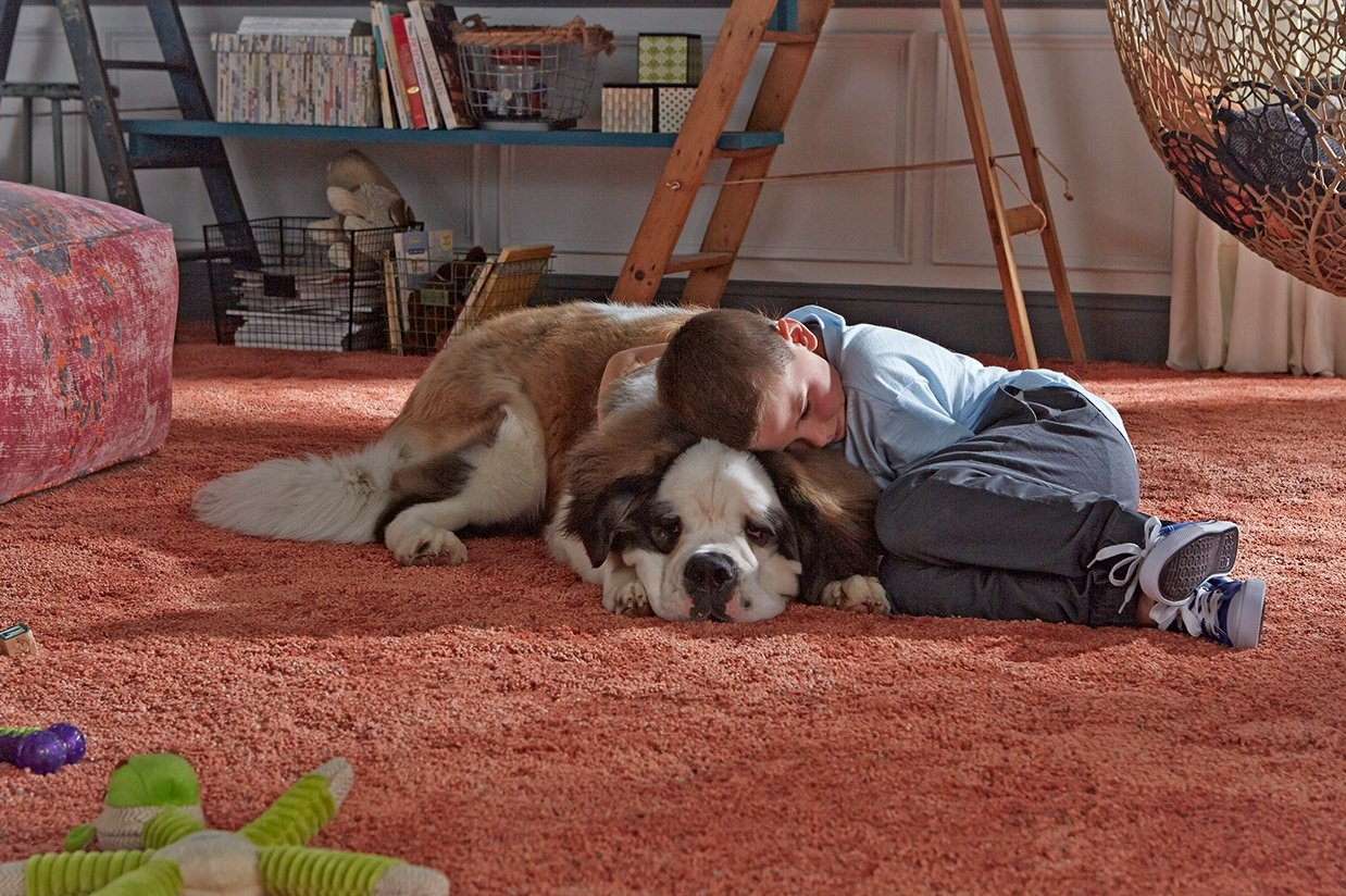 a boy cuddling with a big dog on comfortable Stainmaster® carpet