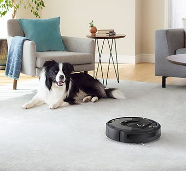 best vacuum for pets