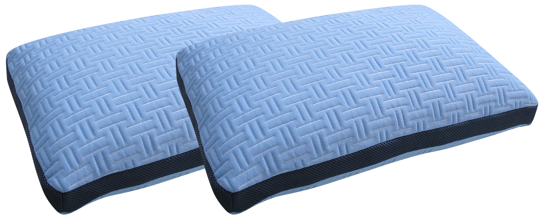 Blue Burrito Double Pillows