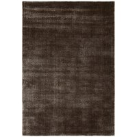 5 x 8 Medium Contemporary Taupe Area Rug - Alida
