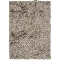 5 x 8 Medium Contemporary Charcoal Gray Shag Rug - Vani