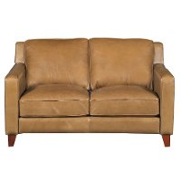 Contemporary Classic Pecan Brown Leather Loveseat - Allure