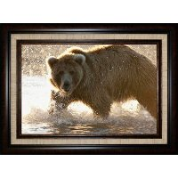Grizzly Bear Foraging For Salmon Framed Wall Art