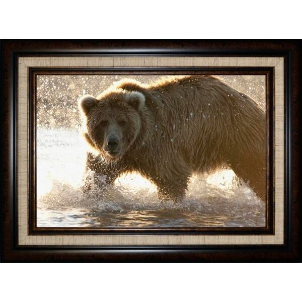 Grizzly Bear Foraging For Salmon Framed Wall Art   RC Willey ...
