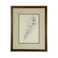 Feather Sketch II Framed Wall Art