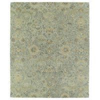 5 x 8 Medium Traditional Silver Area Rug - Helena