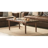 Magnolia Home Furniture Boho Barn Door Coffee Table