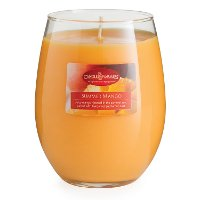 CMD1980/16OZ/CANDLE Summer Mango 16oz Candle - Candle Warmers
