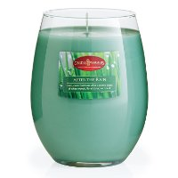 CMD1255/16OZ/CANDLE After The Rain 16oz Candle - Candle Warmers