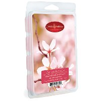 7165/4OZ/WAX/MELTS Cherry Blossom 5oz Wax Melt - Candle Warmers