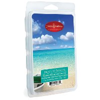 7320/4OZ/WAX/MELTS Escape To Paradise 5oz Wax Melt - Candle Warmers