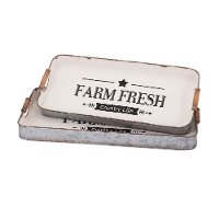 21 Inch Farm Fresh Decorative Tray