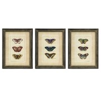 Assorted Butterfly Framed Wall Art