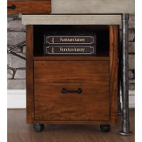 Contemporary 1 Drawer Rolling File Cabinet - Steampunk