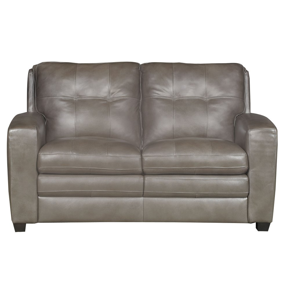 Modern Contemporary Bronze Leather Loveseat   Roland | RC Willey Furniture  Store