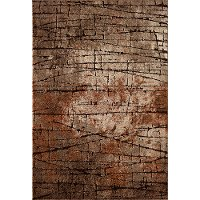 5 x 7 Medium Brown and Rust Area Rug - Rainier