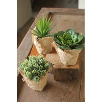 Assorted Artificial Succulent Arrangement in a Burlap Pot