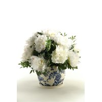 Cream Peonies Arrangement In a Ceramic Blue and White Planter